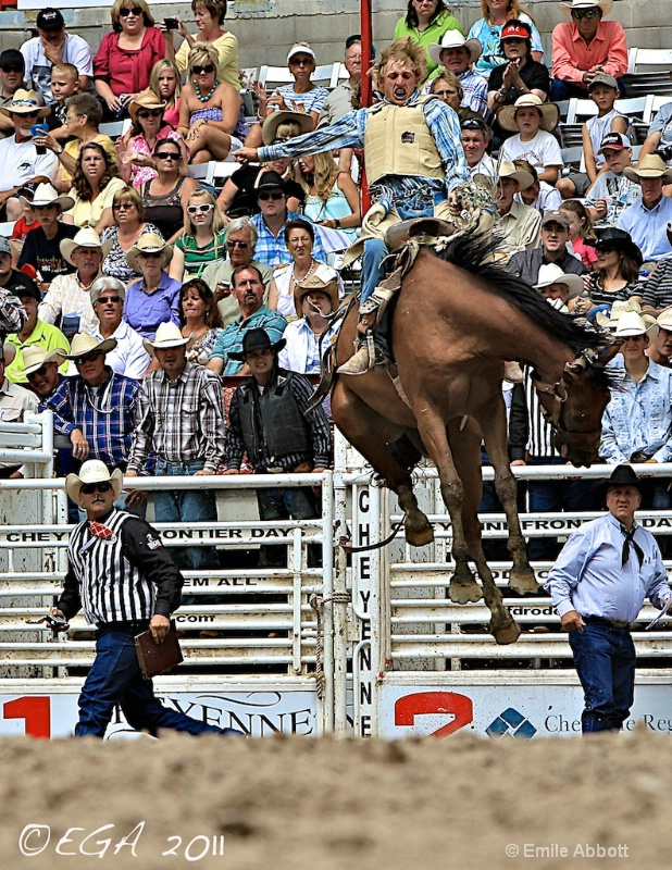 """Before the Fall """"Rookie Saddle Bronc Riding"""