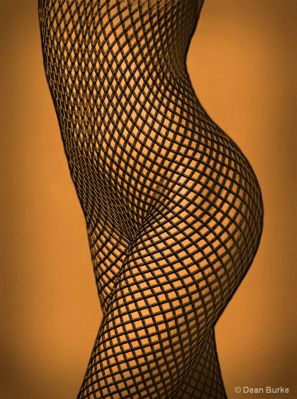 Curves and Lines