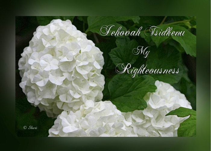 My Righteousness  - S 030