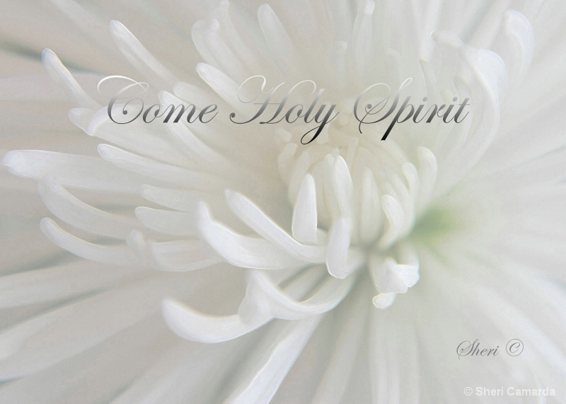 Come Holy Spirit  - S 022