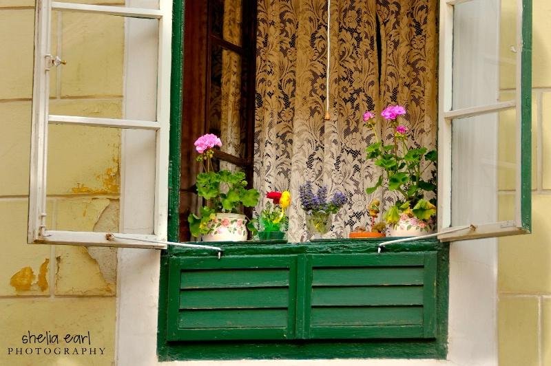 Open Window@@Zagreb