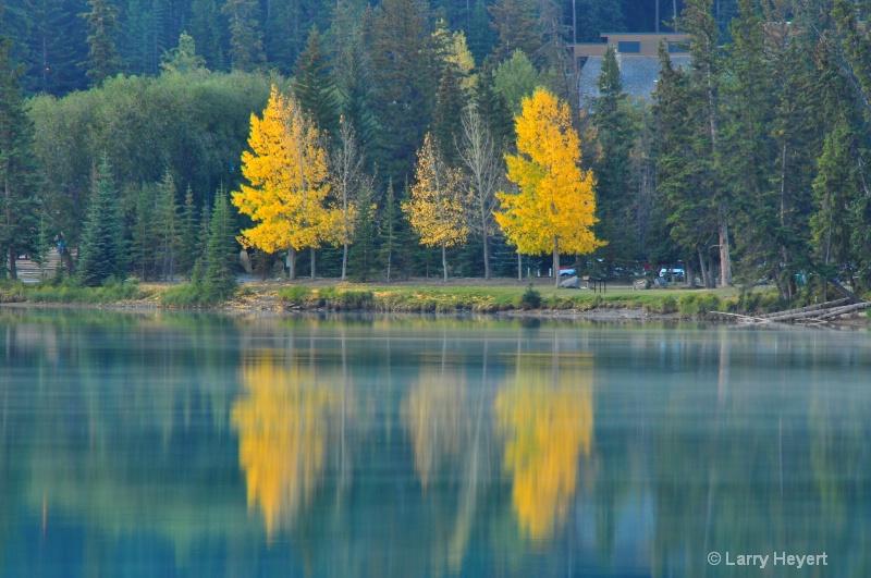 Fall Colors- Banff National Park