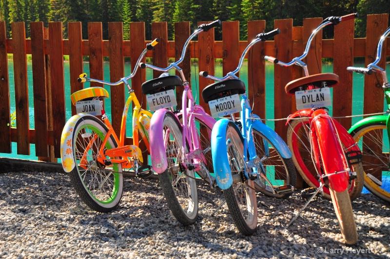 Bike Rentals along Bow River