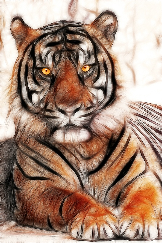Artistic Tiger in SA--Fractalius x2