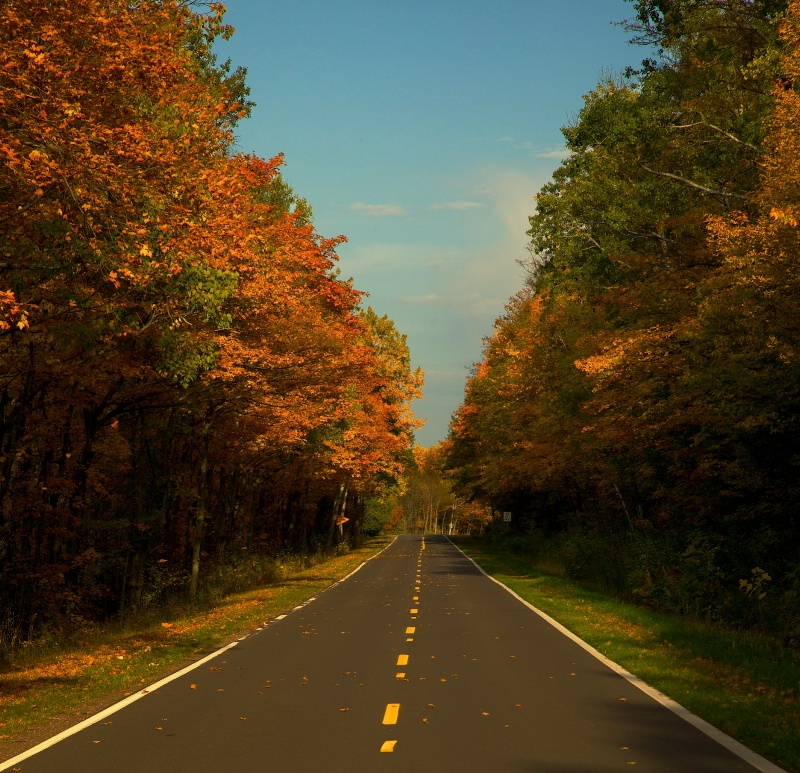 Colorful Road - Revised