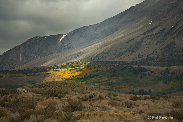 Fall Spotlight, Eastern Sierras