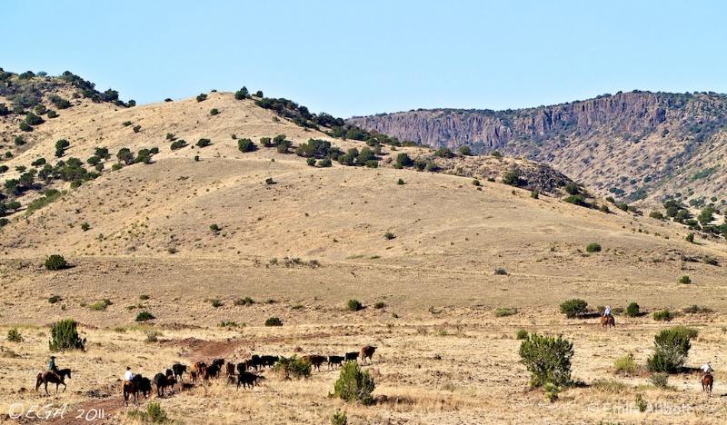Dry arid terrain of 06 Round-Up