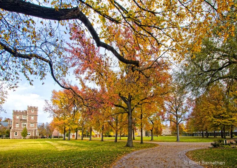 St. Louis in Fall 4