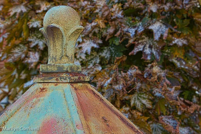 Autumn's Decay