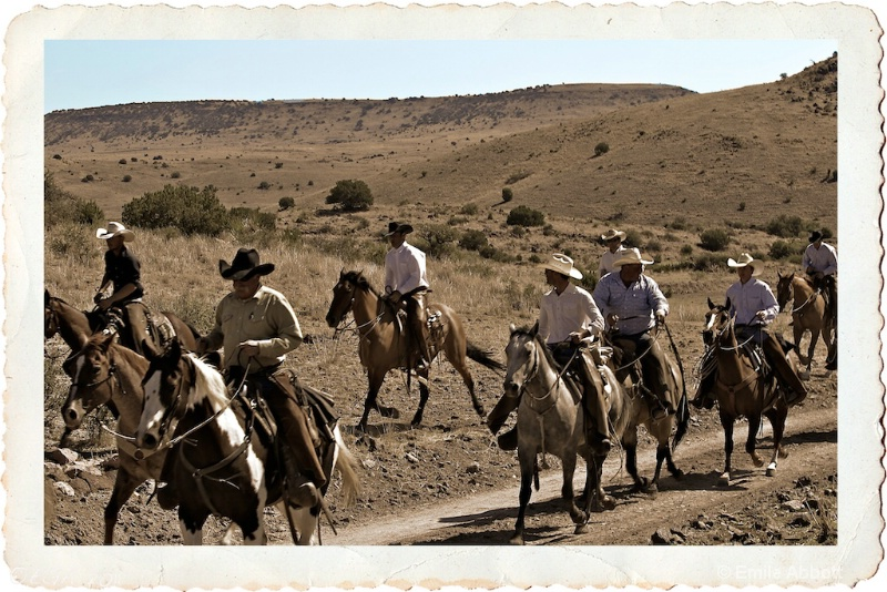 Cowboys long ride to Headquarters