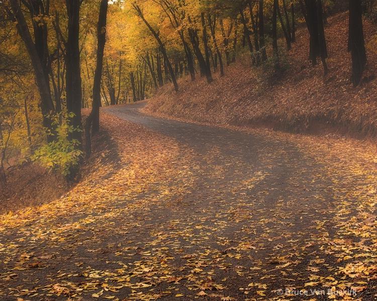 S shaped fall road