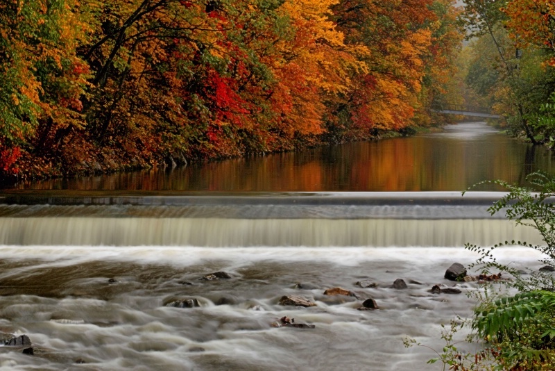 New Creek in the Fall