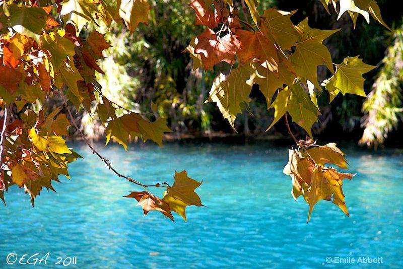 Autumn in Del Rio