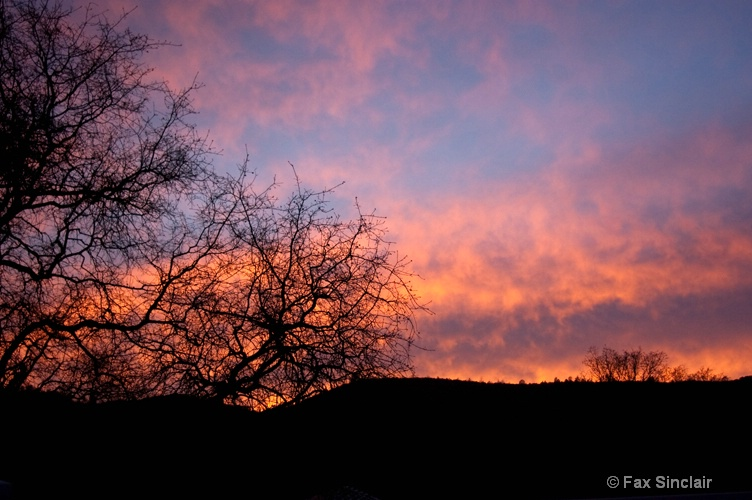 Mariposa Sunrise