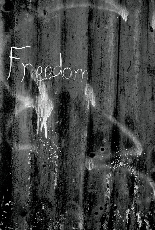 Freedom.... From or To?