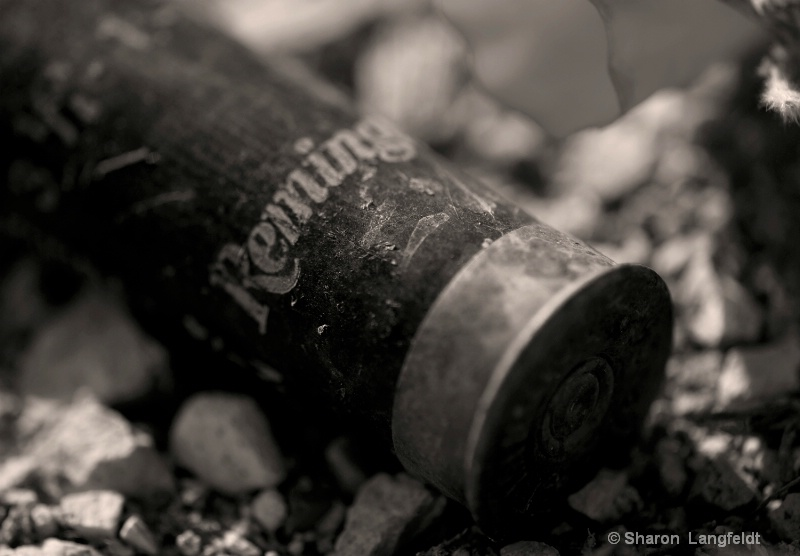 Remington Shell Casing