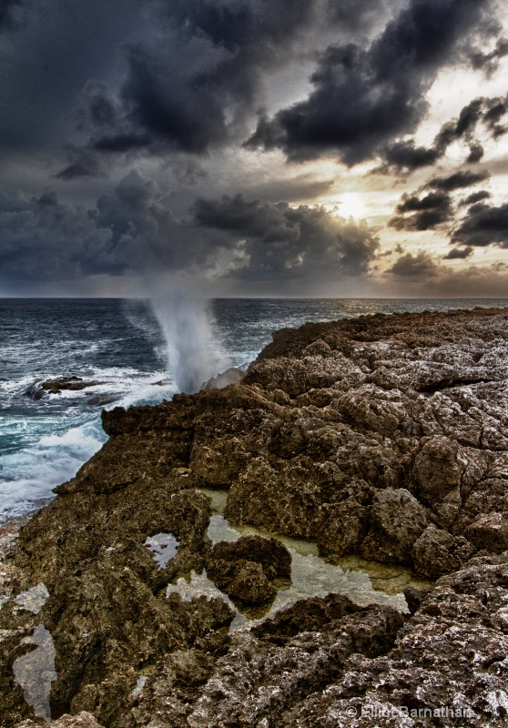 The Blowholes 1