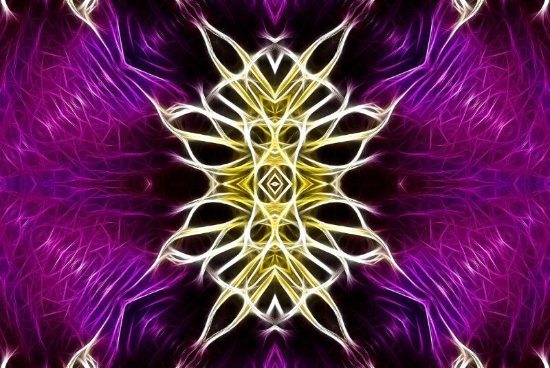 Asheville Purple Flower Revised