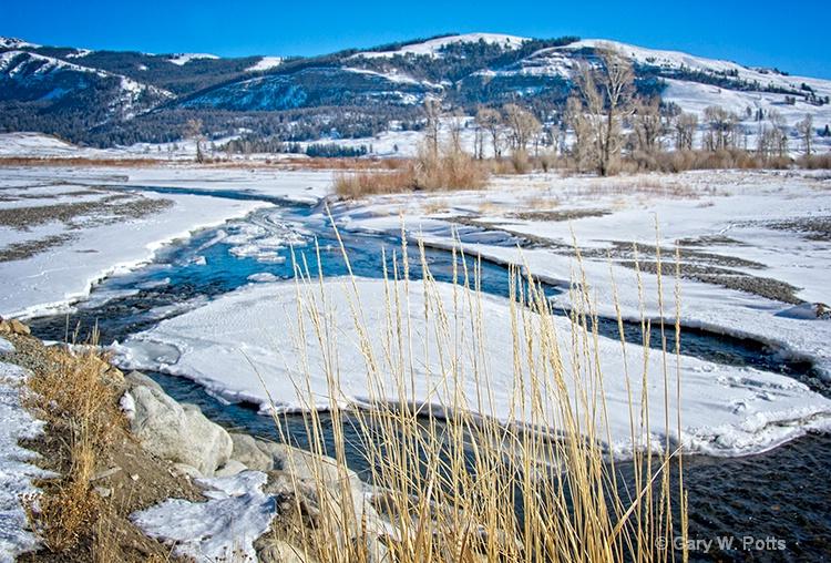 Along the Soda Butte River