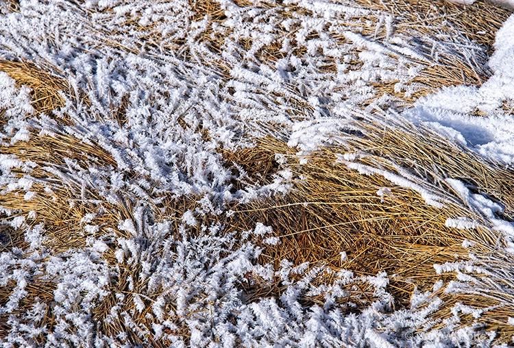 Winter's Textures