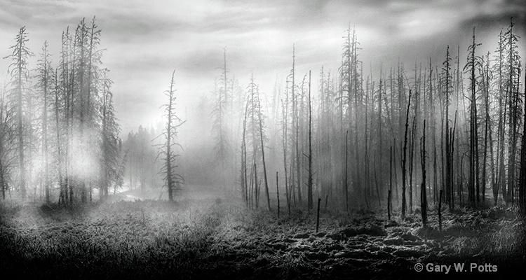 Yellowstone Mood  #2