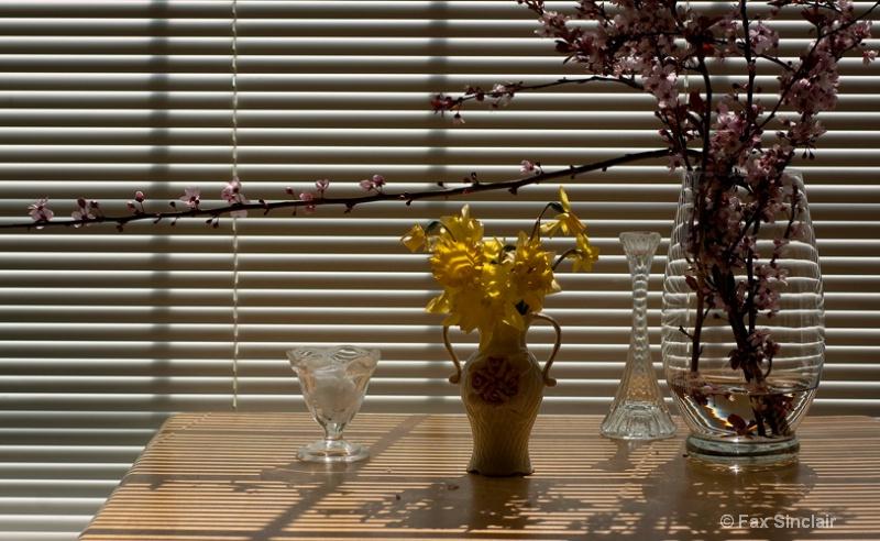 Window Flowers 2