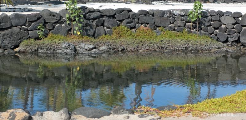 Honaunau Fish Pond