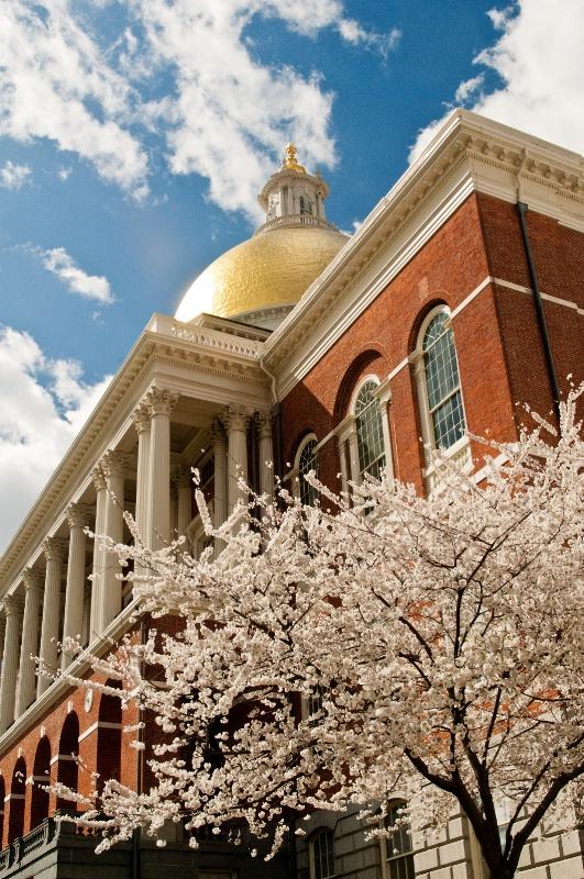 Boston Statehouse--Vertical