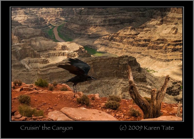 Cruisin' the Canyon