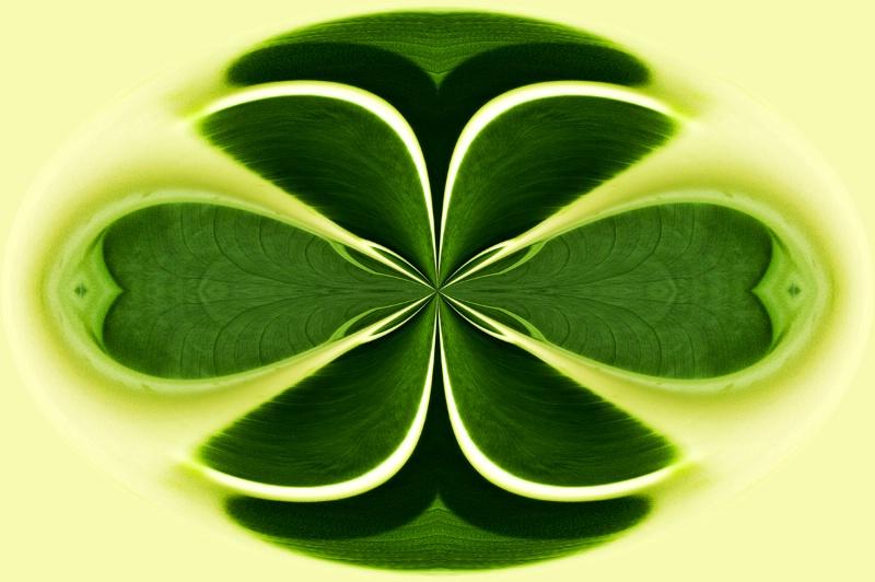Nat Harbor Leaf--Kaleidoscope + Polar Cord 2x