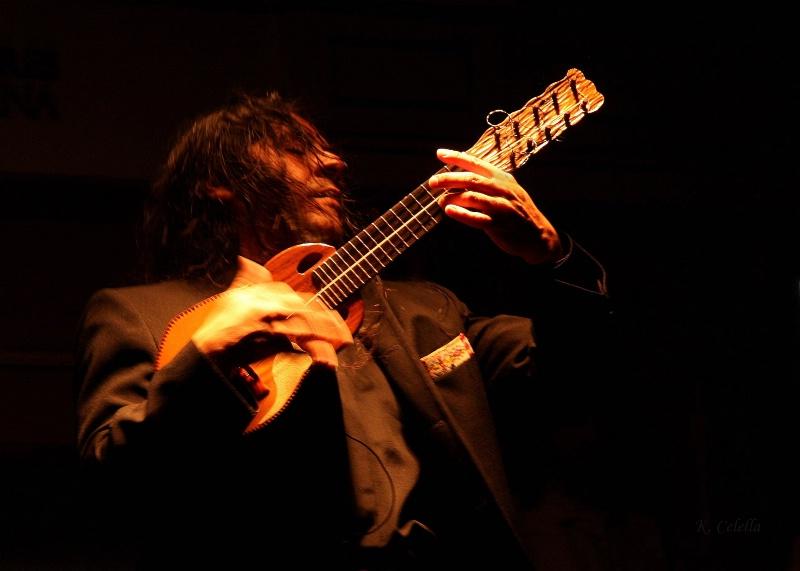 Passionate Musician