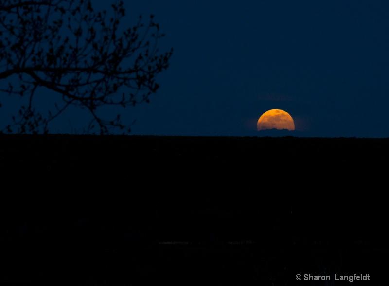 May 2012 Super Moon - Glorious!