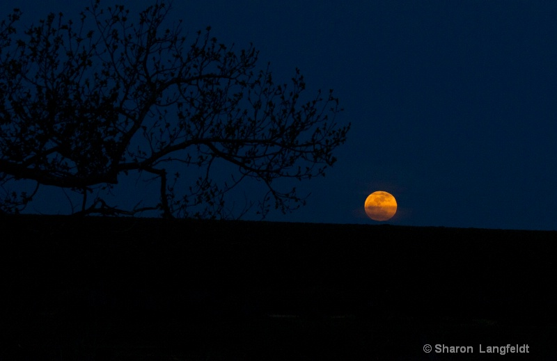 May 2012 Super Moon just above the horizon