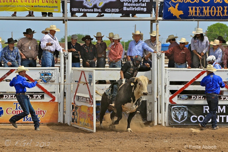 Cody Wood Out the chute on Houdini Highway