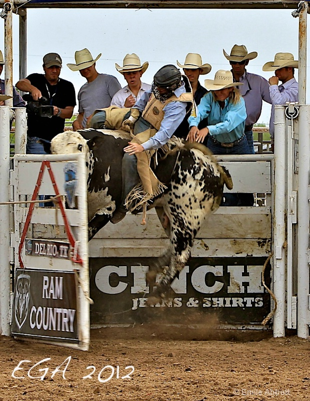 High bucking in the chute