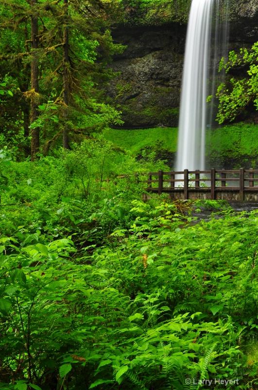 Silver Falls State Park- Oregon