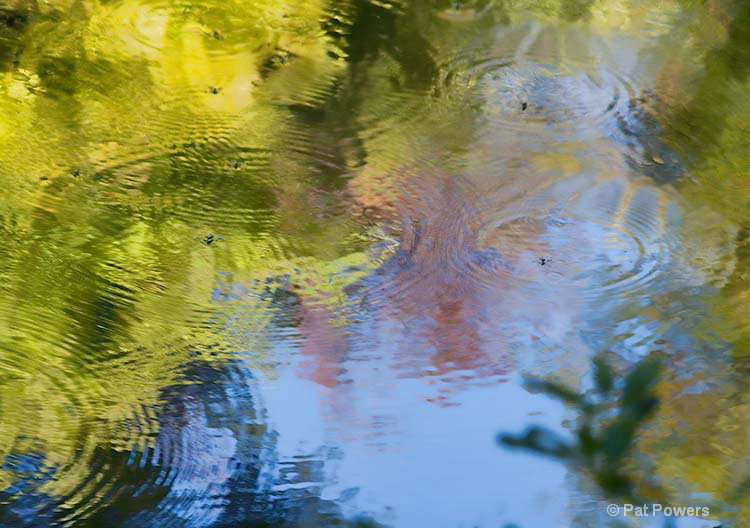 Reflections #6