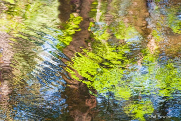 Reflections #7