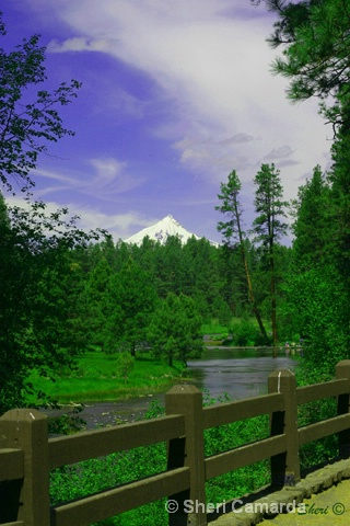 Head Waters of the Metolious River & Mt. Jefferson