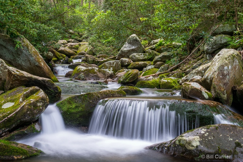 LeConte Creek - Great Smoky Mountains