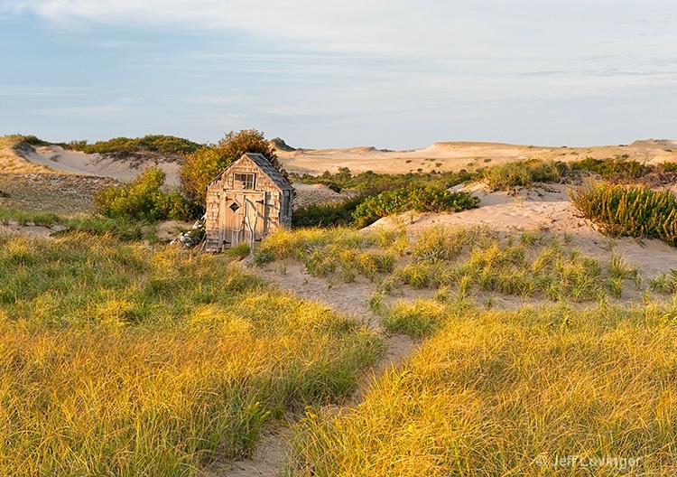 Dune Grass and Shack