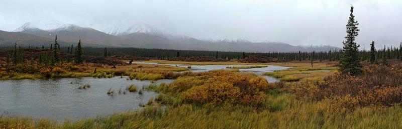 Stormy Pond