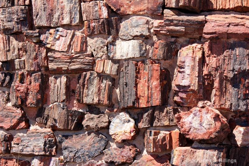 Petrified Wall