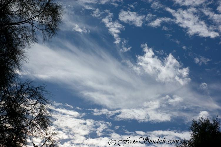 Sky Singing