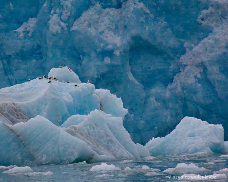 2011 arctic trip - 029