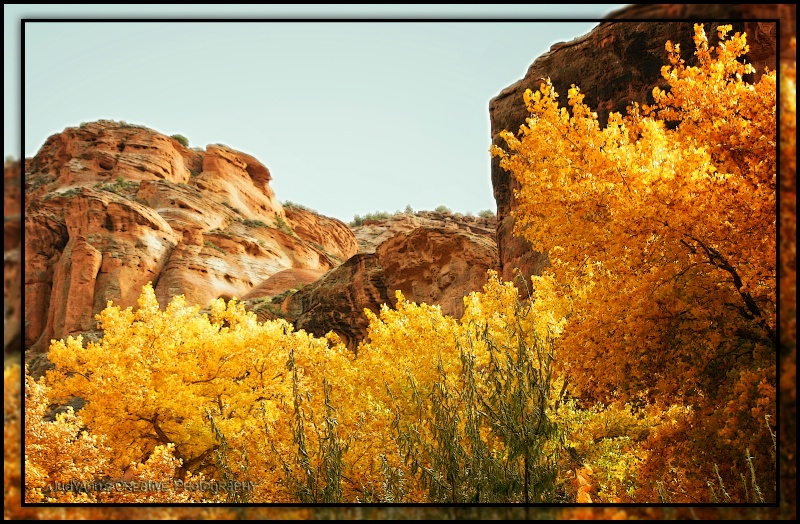 Fall in Canyon De Chelly