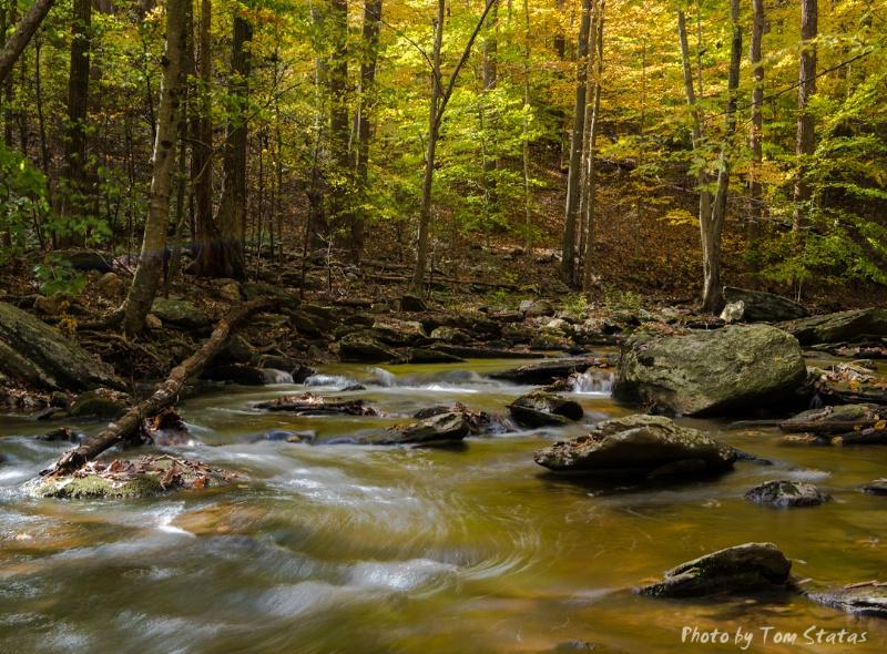 Autumn Colors, Catoctin Mountain Stream, Maryland
