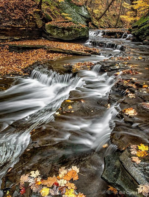 Brandywine Creek Cascades