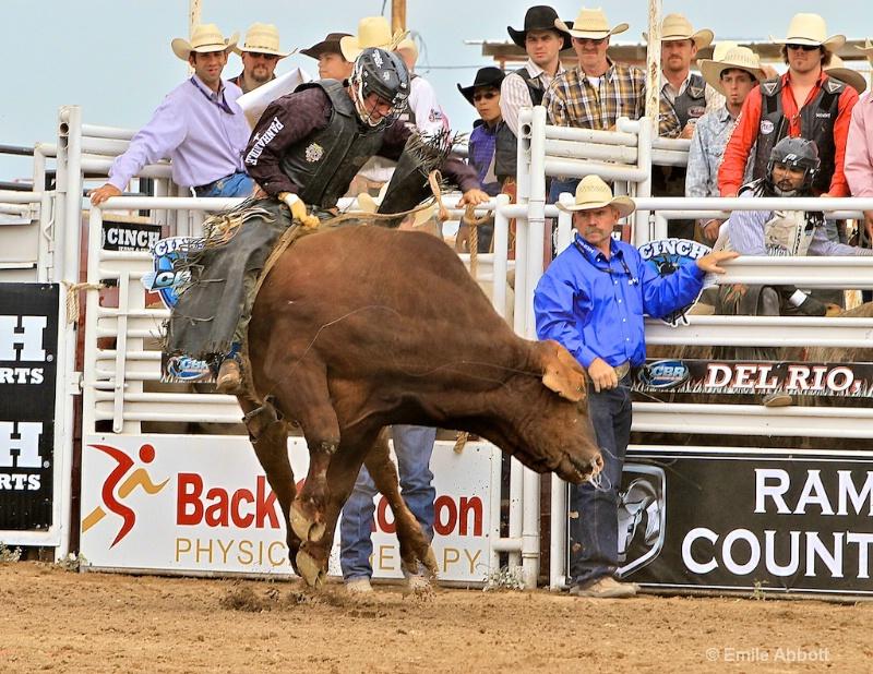 Cole Echols Winner 2012 35th GPM Bull Ride