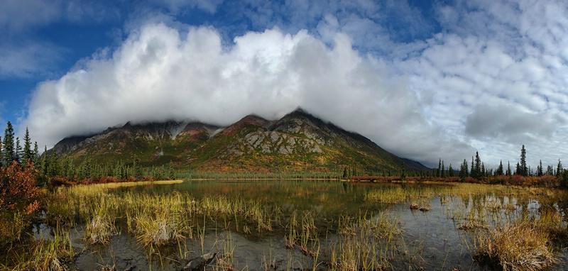 Swamp Buggy Lake